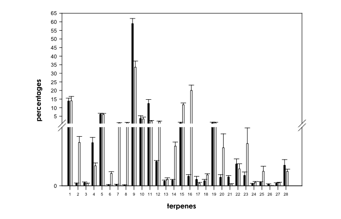Variations in Terpene Profiles of Different Strains of Cannabis